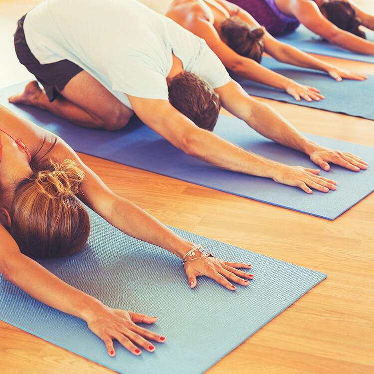 Adult Yoga Beginner Workshop